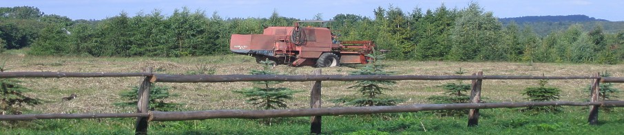 Agroturystyka - Kaszuby
