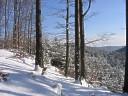 Okolice szlaku Zagórskiej Strugi
